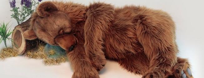 Hansa Grizzly Bear Sleeping